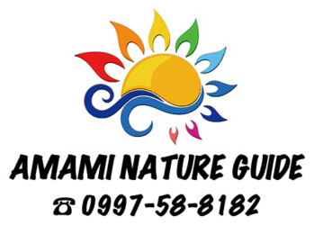 奄美ネイチャーガイド | Amami Nature Guide